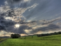 Baum Wolken Himmel