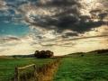 Baum Wolken Himmel 02
